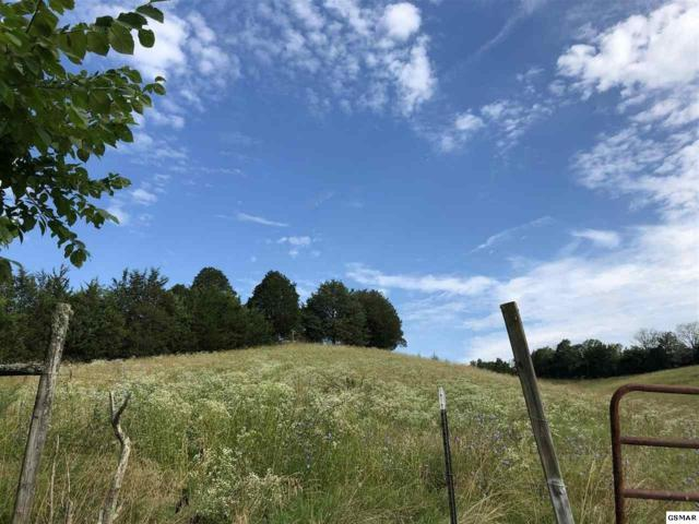 Flat Flat Creek Road, Sevierville, TN 37876 (#223255) :: Colonial Real Estate