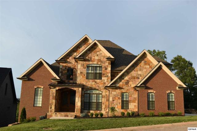 1224 Appaloosa Way, Knoxville, TN 37922 (#223257) :: The Terrell Team