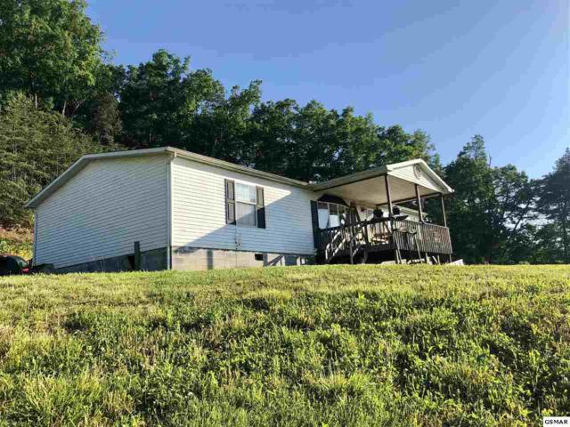 1907 Lakeway Road, Morristown, TN 37814 (#223270) :: The Terrell Team