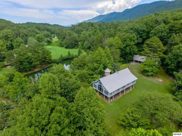 4820 Allegheny Cove Way, Maryville, TN 37803 (#223274) :: Prime Mountain Properties
