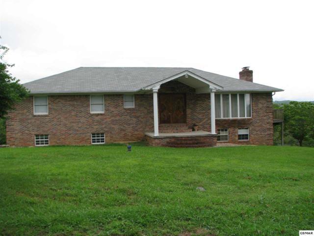 2112 White Oak Trl, Dandridge, TN 37725 (#223277) :: Colonial Real Estate