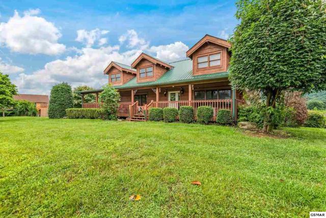 3114 J.H. Headrick, Sevierville, TN 37862 (#223280) :: Colonial Real Estate
