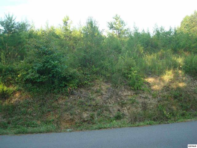 Lot Lot 34 Russell Dr, Kodak, TN 37764 (#223292) :: Colonial Real Estate