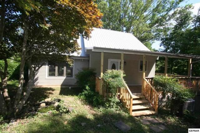1705 Mullins Chapel Rd, Dandridge, TN 37725 (#223300) :: Billy Houston Group