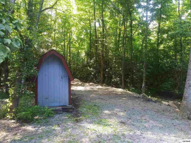 L 119&126 Sassafras Way, Cosby, TN 37722 (#223346) :: Prime Mountain Properties