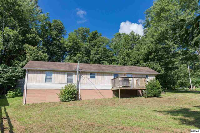 3039 Ogles View Rd, Sevierville, TN 37862 (#223358) :: Prime Mountain Properties