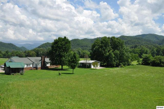318 Wears Valley Road, Townsend, TN 37882 (#223363) :: Colonial Real Estate