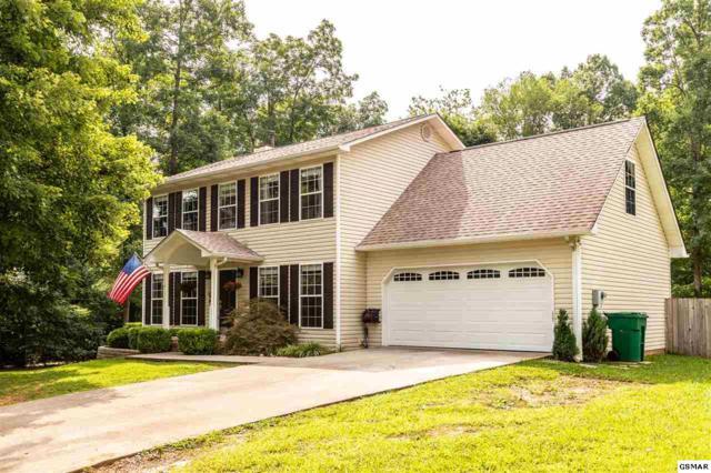 738 Curley Ln, Seymour, TN 37876 (#223366) :: Prime Mountain Properties