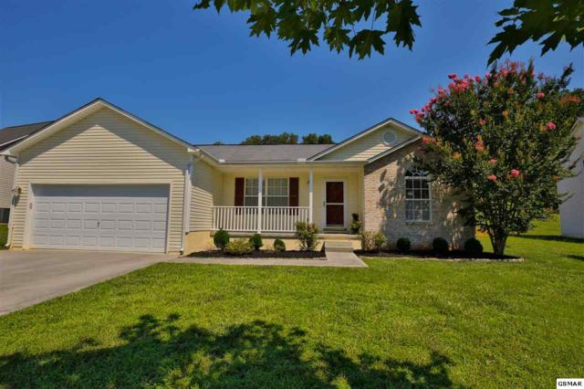 1123 Long Meadow Dr, Knoxville, TN 37920 (#223369) :: The Terrell Team