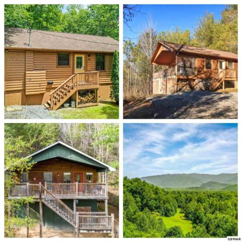 4501 Donna Allen Way, Cosby, TN 37722 (#223370) :: Prime Mountain Properties