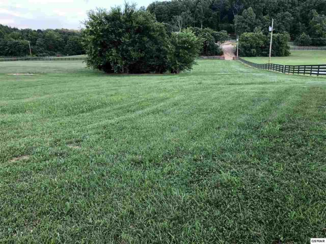 Lot 2 W Dumplin Valley Rd, Dandridge, TN 37725 (#223383) :: Colonial Real Estate