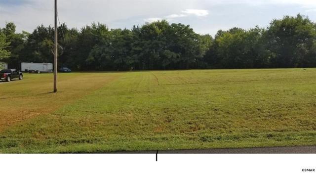 1010 Old Newport Hwy, Dandridge, TN 37725 (#223386) :: Prime Mountain Properties