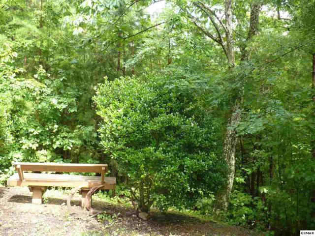 Lot 29-R Quail Way, Sevierville, TN 37862 (#223400) :: Jason White Team | Century 21 Four Seasons