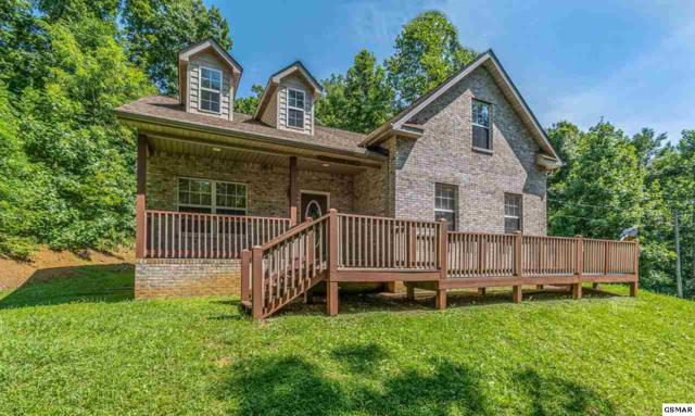 1441 Fawn Rd, Seymour, TN 37865 (#223418) :: Prime Mountain Properties