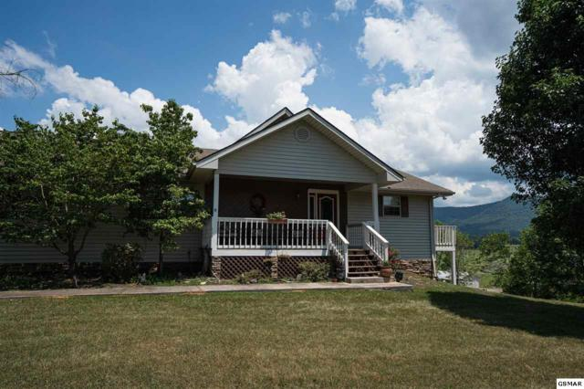 160 Estele Dr, Sevierville, TN 37876 (#223422) :: Prime Mountain Properties
