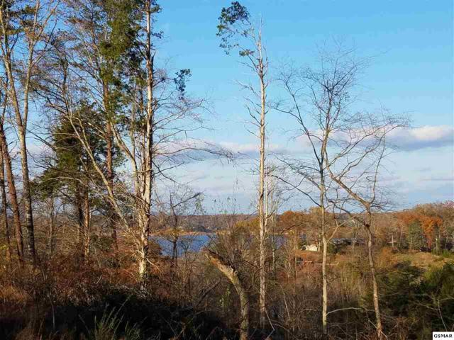Parcel 54.04 Auburn Ln, Dandridge, TN 37725 (#223428) :: Prime Mountain Properties