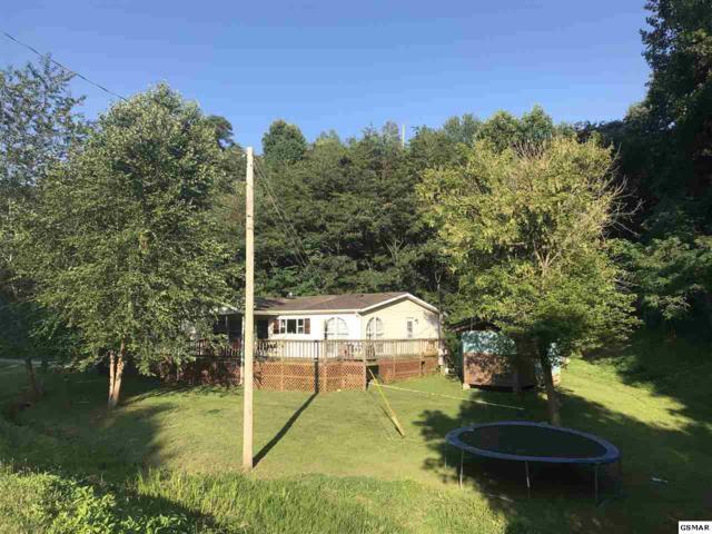 1249 Matthews Hollow Rd, Sevierville, TN 37876 (#223431) :: Colonial Real Estate