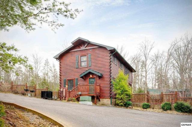 "827 Spirit Loop Way ""A Bears Wilder, Gatlinburg, TN 37738 (#223436) :: Colonial Real Estate"