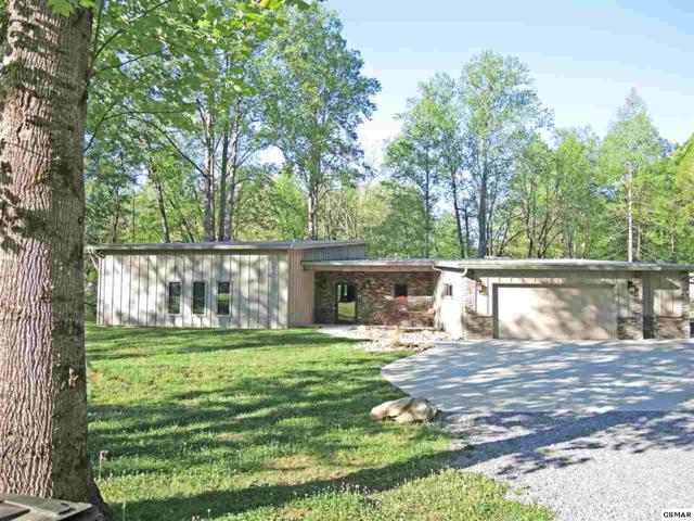 7804 Carnes Rd, Townsend, TN 37882 (#223449) :: Prime Mountain Properties