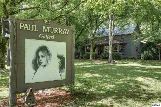 1003 Glades Road, Gatlinburg, TN 37738 (#223461) :: Colonial Real Estate