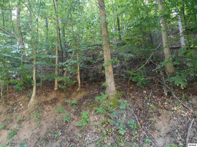 Lot 148R Indian Knob Circle, Pigeon Forge, TN 37863 (#223463) :: Billy Houston Group