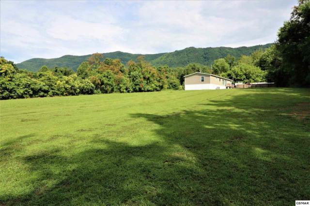 3818 Collier Loop, Dandridge, TN 37725 (#223466) :: Prime Mountain Properties