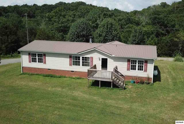 1502 Hollow Springs Rd, White Pine, TN 37890 (#223472) :: Billy Houston Group