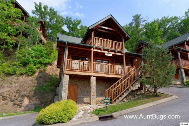 1606 Mountain Lodge Way Poolside (Farme, Pigeon Forge, TN 37862 (#223478) :: Billy Houston Group