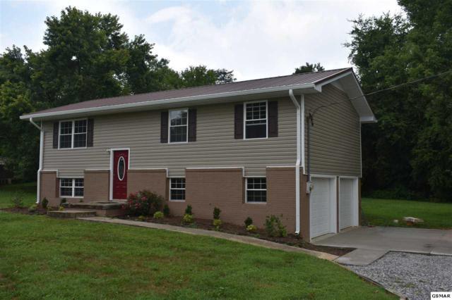 2636 Randall Road, Strawberry Plains, TN 37871 (#223503) :: Billy Houston Group