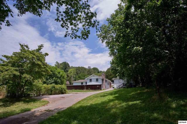 9427 Smoky Row Rd, Strawberry Plains, TN 37871 (#223505) :: Colonial Real Estate