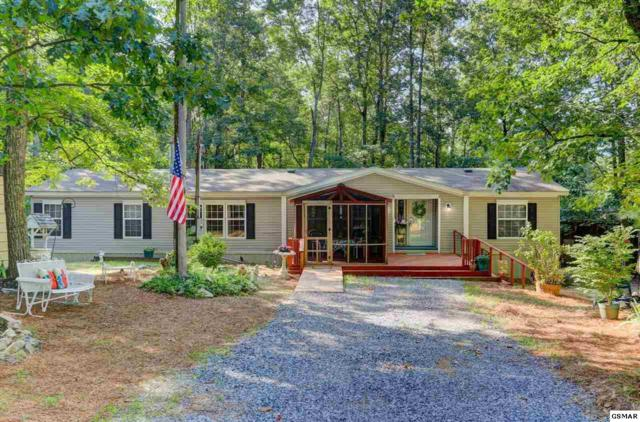 2364 Nichols Branch Way, Sevierville, TN 37876 (#223507) :: Colonial Real Estate