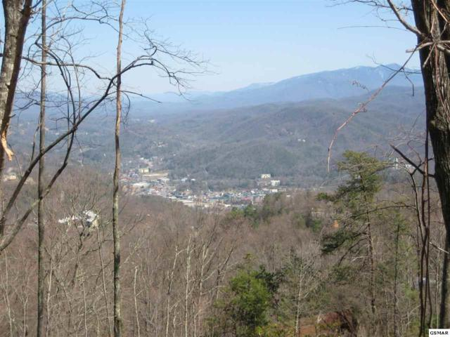 Lot 5 Zermatt Dr, Gatlinburg, TN 37738 (#223536) :: The Terrell Team