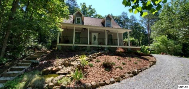2825 Easy St, Sevierville, TN 37862 (#223550) :: The Terrell Team