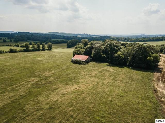 Caldwell Road, Jefferson City, TN 37760 (#223551) :: Colonial Real Estate