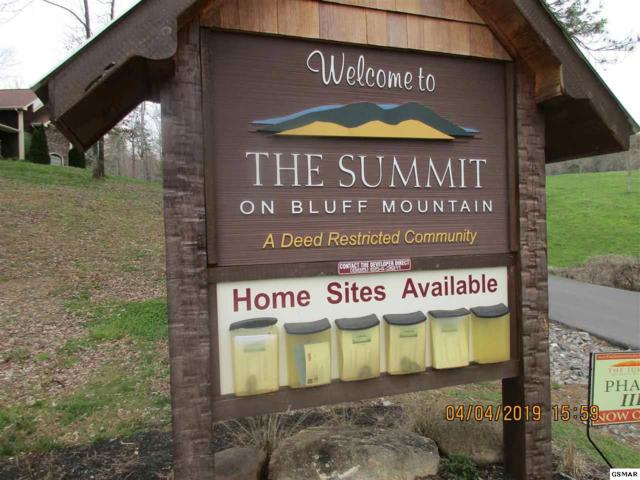 LOT 30 Summit Trails Dr, Sevierville, TN 37862 (#223569) :: The Terrell Team