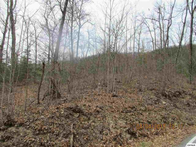 LOT 42 Misty Bluff Trail, Sevierville, TN 37862 (#223572) :: The Terrell Team
