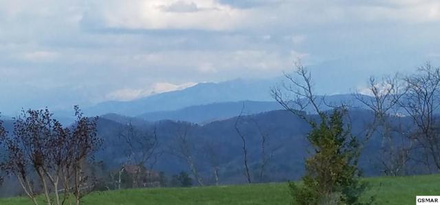 Lot 130 Bluff Mtn Rd, Sevierville, TN 37862 (#223575) :: The Terrell Team