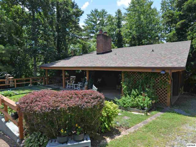 123 Cutter Gap Rd, Townsend, TN 37882 (#223582) :: Four Seasons Realty, Inc