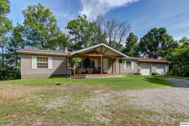 1402 Kinder Lane, Dandridge, TN 37725 (#223589) :: Prime Mountain Properties