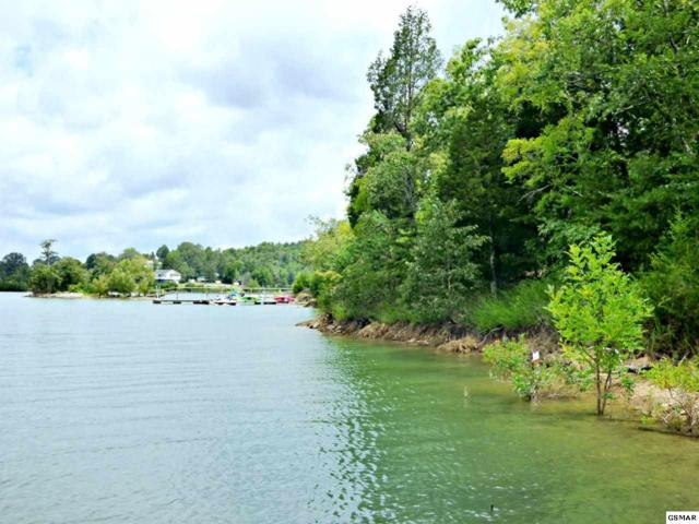 Lot 22 Cypress Dr., Dandridge, TN 37725 (#223599) :: Four Seasons Realty, Inc
