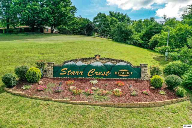 Angela Starr Drive Starr Crest Res, Sevierville, TN 37876 (#223601) :: Prime Mountain Properties
