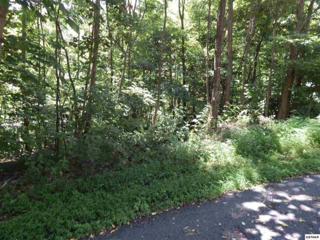 Lot 7 Parkside Village Dr., Sevierville, TN 37862 (#223614) :: Four Seasons Realty, Inc