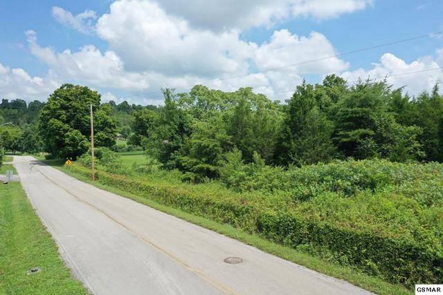 Parcel 059.06 Milldale Dr, Dandridge, TN 37725 (#223636) :: SMOKY's Real Estate LLC