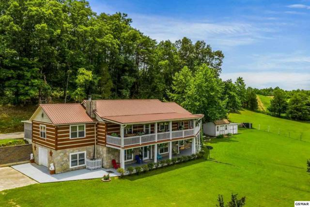 2335 Jim Henry Road, Dandridge, TN 37725 (#223637) :: SMOKY's Real Estate LLC