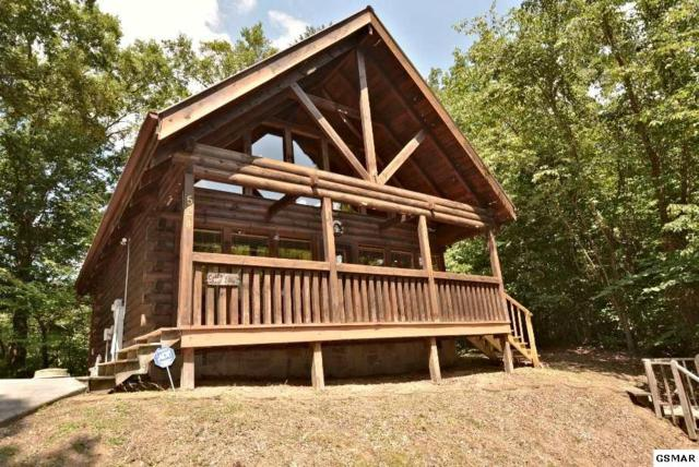 """524 Hideaway Ridge Circle """"Cuddly Bear"""", Sevierville, TN 37862 (#223647) :: Colonial Real Estate"""