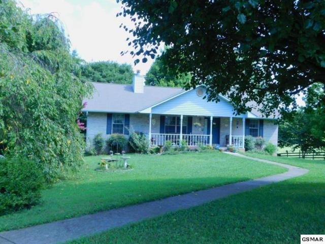 6215 Nails Creek, Seymour, TN 37865 (#223673) :: SMOKY's Real Estate LLC