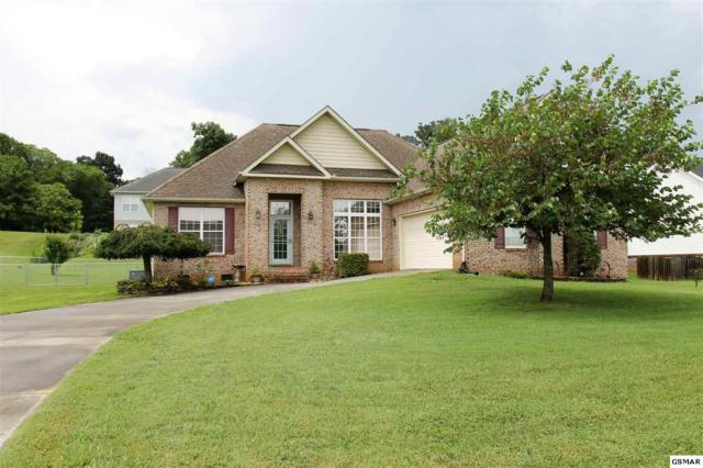 516 Gazebo Overlook, Seymour, TN 37865 (#223674) :: SMOKY's Real Estate LLC
