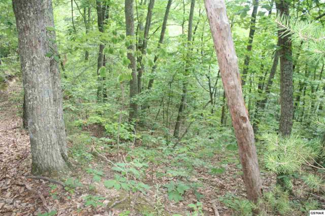 Cove Valley Way Parcel 093M E 0, Cosby, TN 37722 (#223676) :: SMOKY's Real Estate LLC