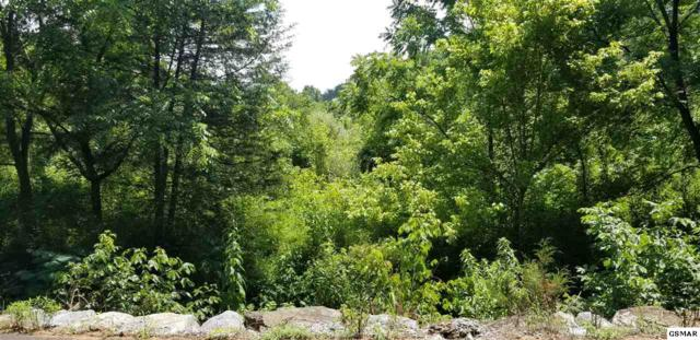 LOT TR-1 Providence Road, Sevierville, TN 37876 (#223677) :: SMOKY's Real Estate LLC
