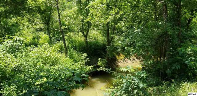 10.33 ACRES Millician Grove Road, Sevierville, TN 37876 (#223678) :: SMOKY's Real Estate LLC